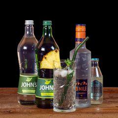 Ice Breaker Cocktail-Paket komplett Bundle mit 9 Mile Vodka, JOHN'S Mojito, Lemon Squash und GOLDBERG Bitter Lemon. Auf dem Foto zu sehen ist der fertig gemixte Cocktail sowie alle Zutaten.